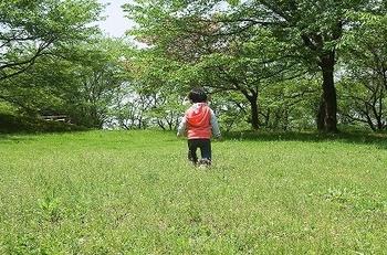 原っぱのバブー.jpg